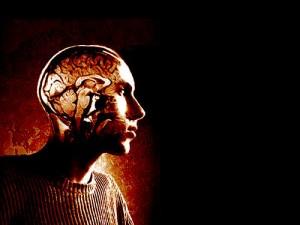 brainstick